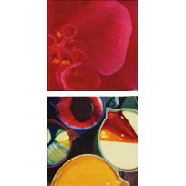 61550-Confetti Print-Confetti Tekstil San. ve Dış Tic. A.Ş.