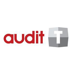 34337-Audit-T-Mirsis Bilgi Teknolojileri Ltd. Şti.
