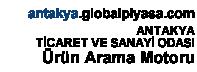 antakya.globalpiyasa.com