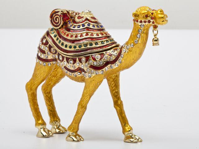 Подарок верблюд что означает