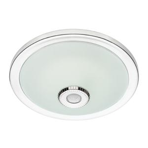 Motion Sensored Ceiling Light