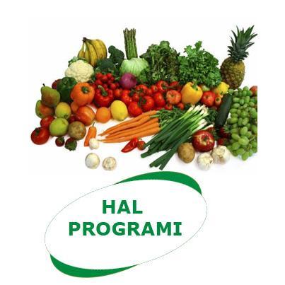 205390-Hal Program-Aybel Soft