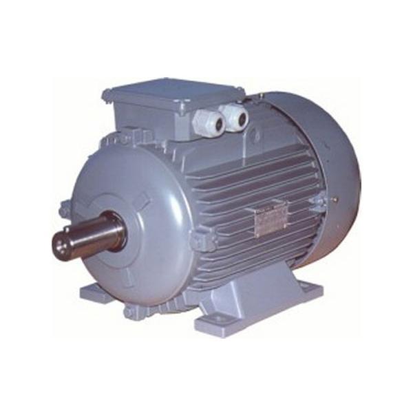 186314-High Efficiency Asynchronous Motor-Bertol Elektrik Motor Makina Pompa San. Tic. Ltd. Sti.