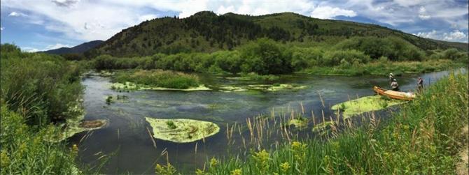 163138-Ekolojik Araştırmalar-Çevsis Arge Danışmanlık