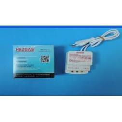 169351-Hezgas Gas Alarm Detector-Tasarim Elektronik