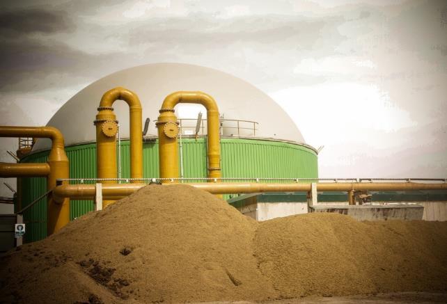 221776-Biomass Energy Plant with Plant and Animal Sources-Afyon Enerji ve Gubre Uretim Tic.A.S.