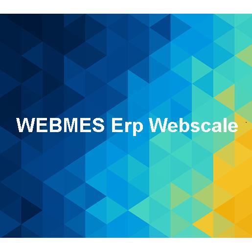 169115-Webmes Erp Webscale - Business Software-Infosis Bilsim ve Kurumsal Gelisim Enstitusu San. ve Tic. Ltd. Sti.