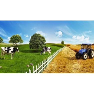 205568-Development of Healthy Calf Training Program-Atavet Tarim Hayvancilik Arastirma ve Gel. Hizm. Ltd. Sti.