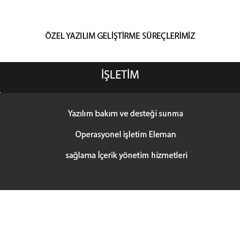 205593-Web and Software Services-Dikey Elektronik Bilisim Egitim Danismanlik Reklam San. ve Tic. Ltd. Sti.