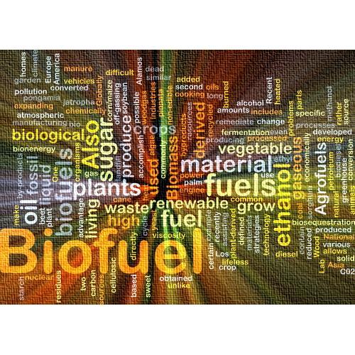 169106-Fossil Fuels and Renewable Fuels-Teamsan Teknoloji Endustriyel Ar-Ge ve Muhendislik Hizmetleri Tic. San. Ltd. Sti.